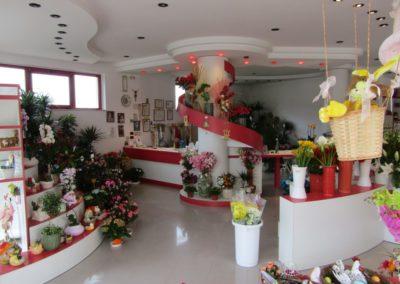 ilnegozio-img-gallery-21