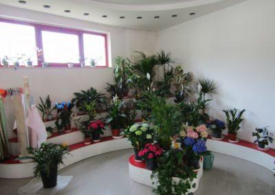 ilnegozio-img-gallery-32