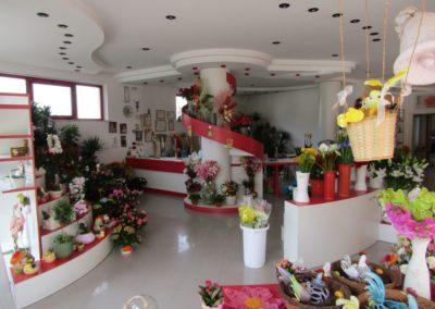 ilnegozio-img-gallery-35