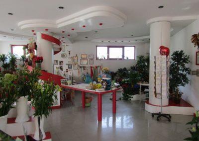 ilnegozio-img-gallery-36